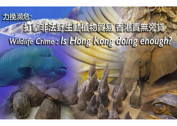 1-resource-f-wildlife-crime-is-hong-kong-doing-enough-presentation-december-2015