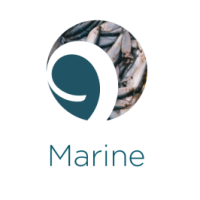 RESEARCH MARINE