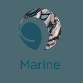 Marine-266x266-ADMCF